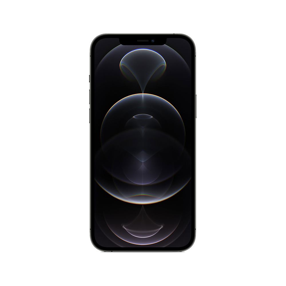 Apple iPhone 11 Pro Max - face zoom